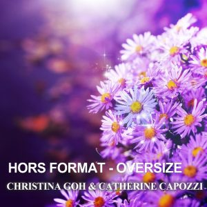 hors-format-oversize-cover_500